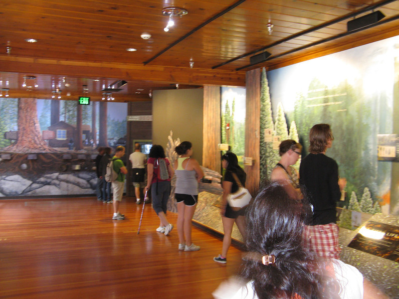 Looking at the museum exhibits.