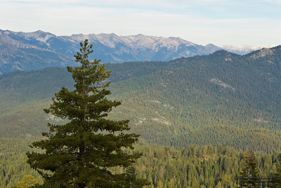 Scenic view of Kings Canyon landscape. Sequoia and Kings Canyon National Park, California.