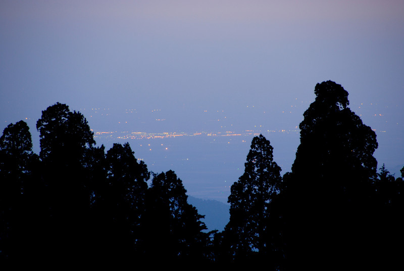 City Lights<br /> Behind some sequoias in the Redwood Mountain Grove is civilization in the San Joaquin valley.