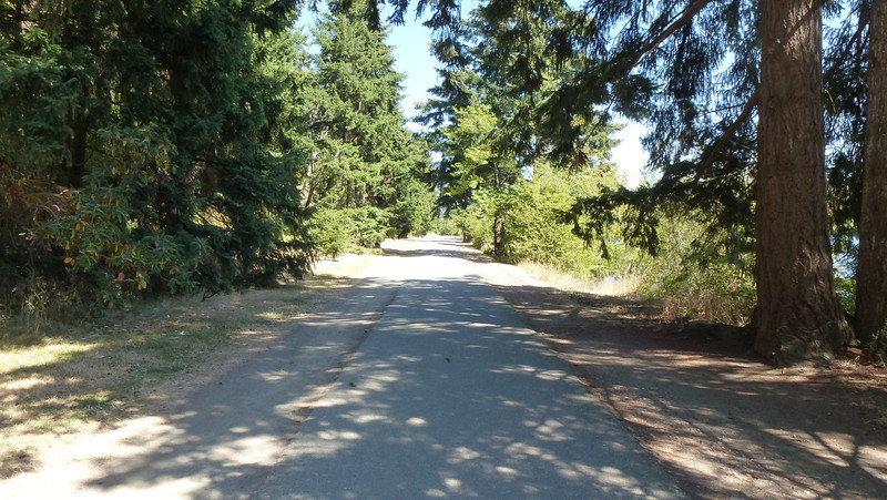 One of the trails around the park - called Shore Loop Road -- no vehicles allowed.