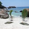 Anse Takamaka on Mahe island