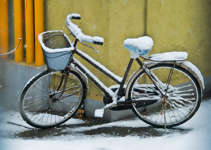 The wet snow of Shanghai caked this bicycle in a white frosting.