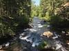 Burney Creekdownstream  from the Rainbow Birdge