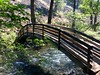 The Rainbow Bridge on the loop trail below the falls