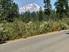 Mt Shasta from the McCloud Falls Loop