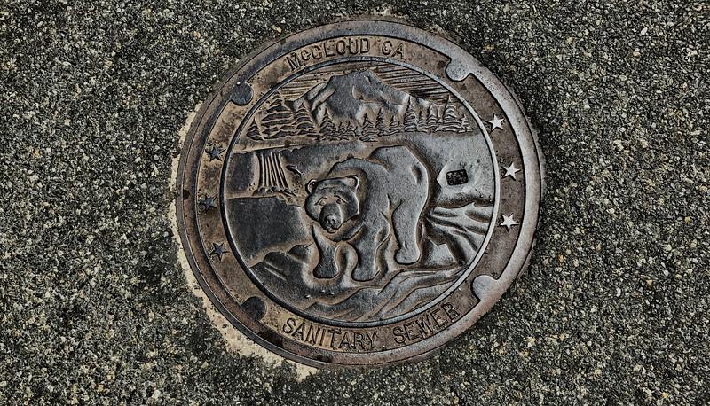 Sewer Access Art