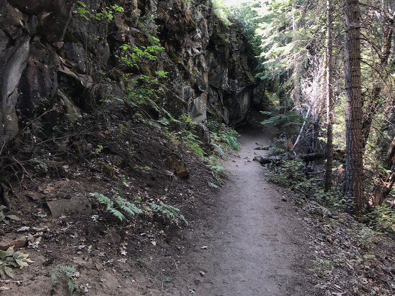 Trail to the Upper Falls