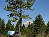 Last View of Mt Shasta
