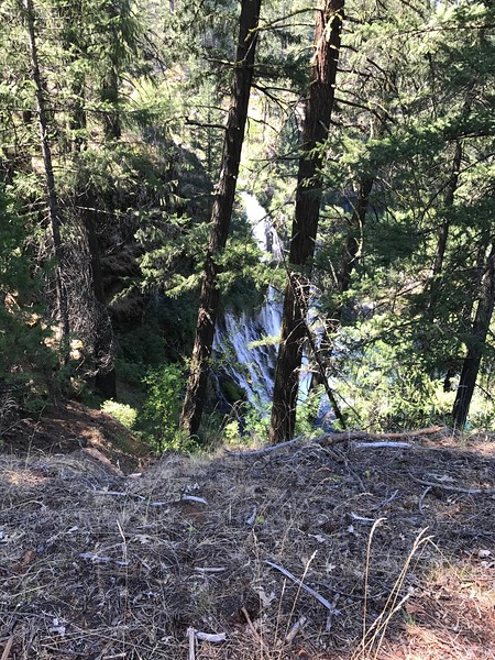 Burney Falls from the Loop trail )Other side)