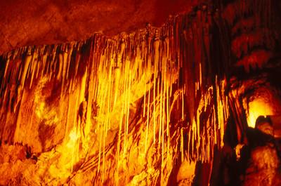 King Solomon's Cave; Liena Road, Liena, Tasmania, Australia; 9 December 1995. Photos by Des Thureson - http://disci.smugmug.com. Photos scanned from 35mm transparencies.