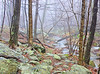 I left the Greyhorse Inn about 5AM.  As I drove up Skyline drive in the Shenandoah's, I could barely see out of my windshield because of the fog.<br /> I began my journey back from the falls around 11 AM.  You can see how much fog there still is.  This is one of the streams headed to the falls.