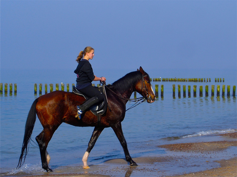 This shot was taken in person, this girl was riding her horse on the beach.