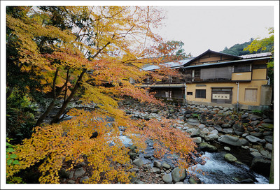 Along Katsura River