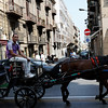 Palermo - these horse drawn carriages seem to be very popular with tourists.