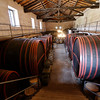 Near Mt. Etna - some of the large barrels at the Barone di Villagrande winery.
