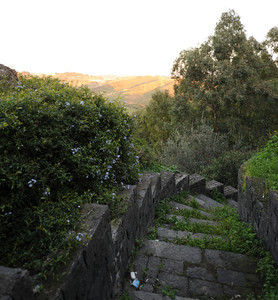 DSC_3941 Photos taken around Sicily, Italy, in December 2013.
