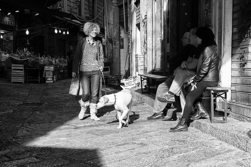 Dog walker, Palermo, Sicily, Italy