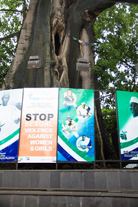 In Freetown at this center of a roundabout surrounded by a concrete fence and adorned with various messaging stands an enormous Cotton Tree. The tree is the city's historic symbol and most famous landmark. The tree is known to have existed in 1787 when the first settlers arrived.  It is believed that when a group of former African American slaves, who had gained their freedom by fighting for the British during the American Revolutionary War, landed in Freetown, they apparently rested and prayed underneath the shade of the tree.