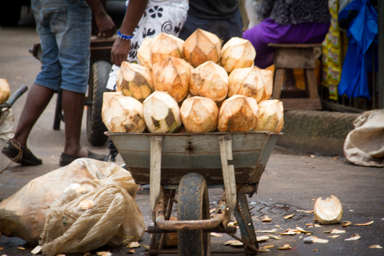 cocnuts for sale in the market