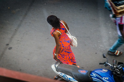 Freetown Titi
