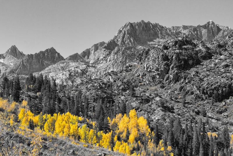 Sierras and Aspens