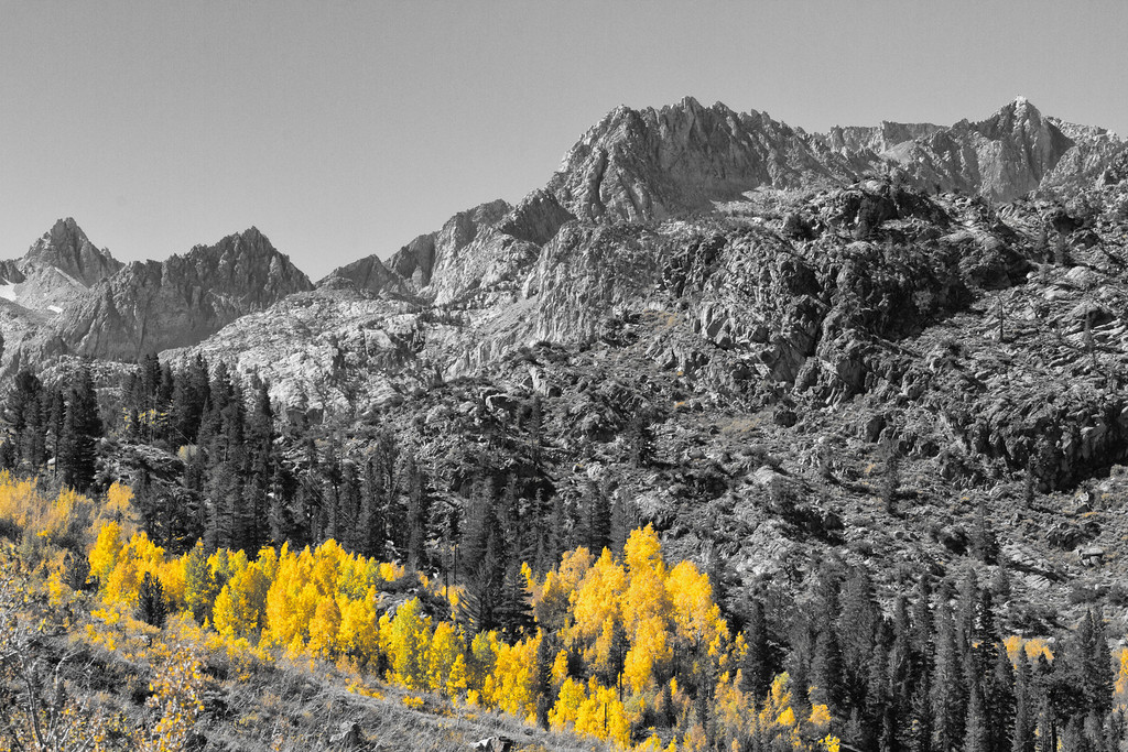 Sierras and Aspens