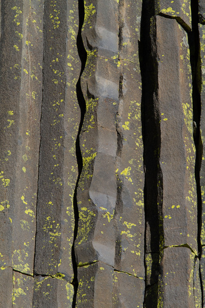 Close up of some of the lava columns at Devil's postpile