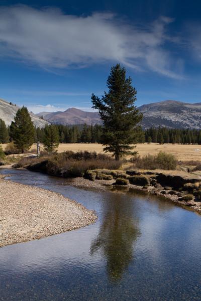 Tuolemne Meadows stream