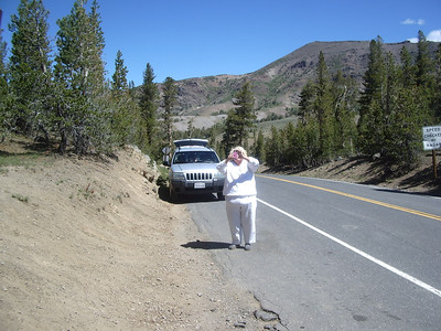 Sierras, July 1, 2012