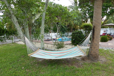 The hammock and pool area.