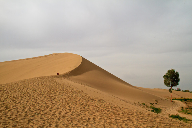 The Singing Mountains at Dunhuang