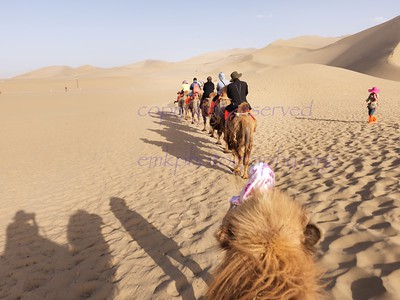 Silk Road Places and shows