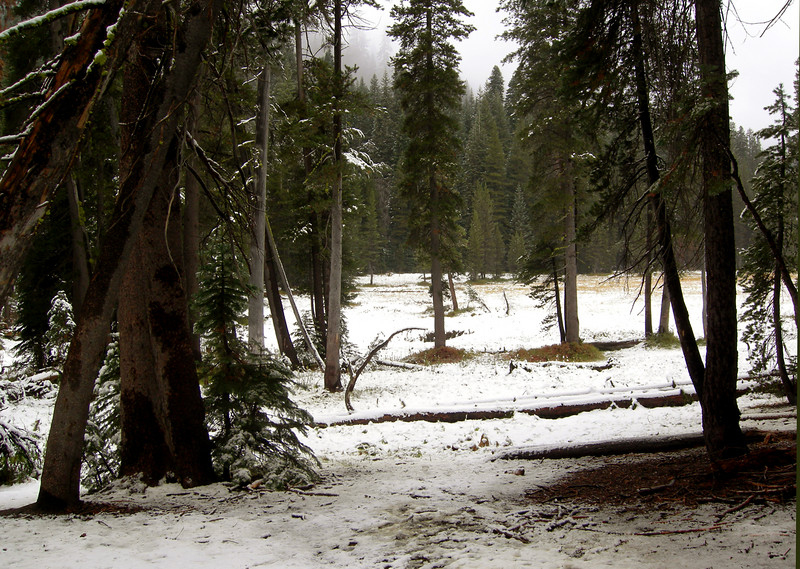 Cahoon Meadow - after