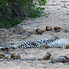 Female Sleeping in the river bed