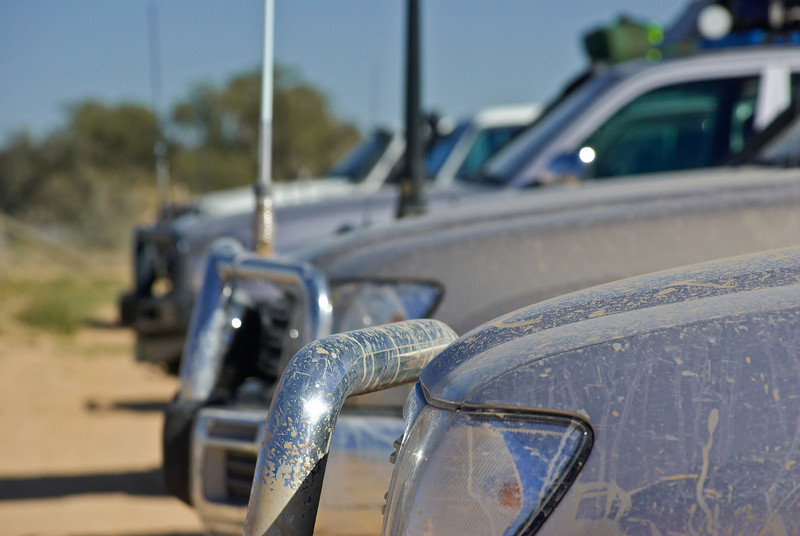 Rush hour at Innamincka