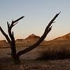 Painted Desert. Early morning.