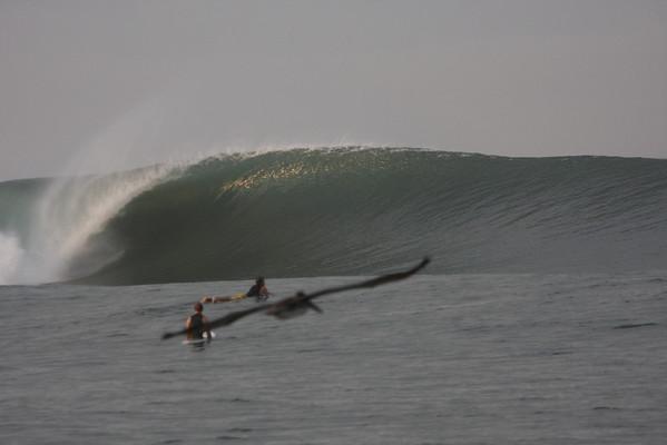 Sinaloa Surf 2012