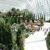 Garden by the Bay - view of interior of flower building