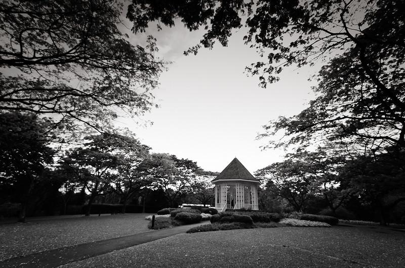 botanic garden b/w