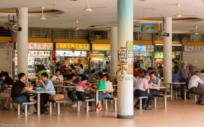 """Old Airport Road Food Centre is one of the many hawker centres in Singapore. Each one has dozens of food stands like the ones you see in the background - each specializing in one or two dishers. The hawker centres were one of the highlights of the trip for me. There were so many different food options - Chinese, Indian, Malaysian, etc.<br /> We went to these places every day for """"brunch"""" (since we were getting up at noon or so every day after enjoying the nightlife at Marina Bay) and we'd usually end up getting some type of dragon fruit or star fruit smoothee at the end. Going to multiple hawker centres are an absolute must in Singapore. It's also kind of nice that the food here is pretty cheap - you go from buying $20 vodka sodas one night to spending $10 total on an iced coffee, smoothee, egg and cheese prata and chicken rice the next day."""