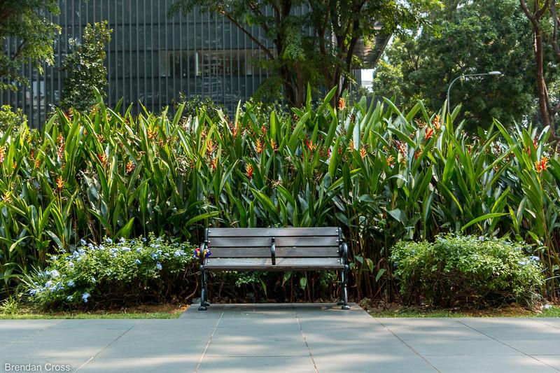 Random parks and greenery fill the city.