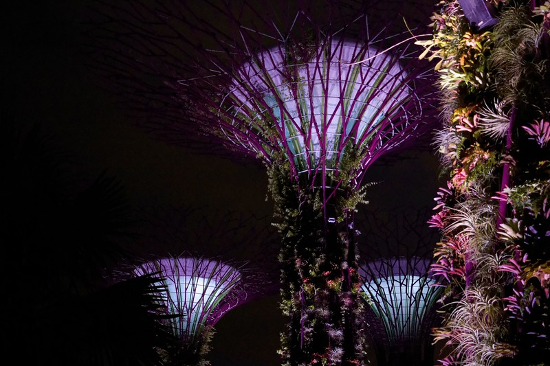 Singapore_080_20190405-194024