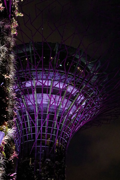 Singapore_083_20190405-194346
