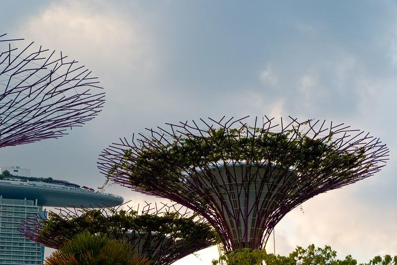 Singapore_061_20190405-183301