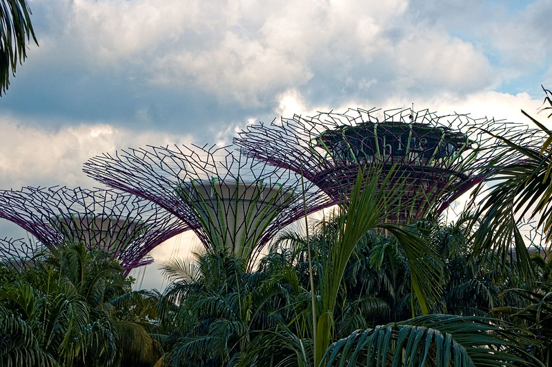 Singapore_041_20190405-173242