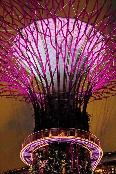 Singapore_077_20190405-193908