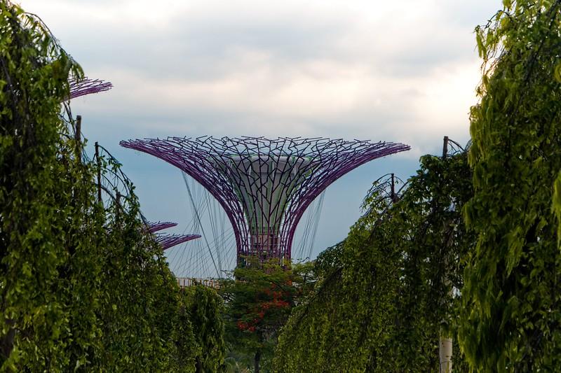 Singapore_035_20190405-172320