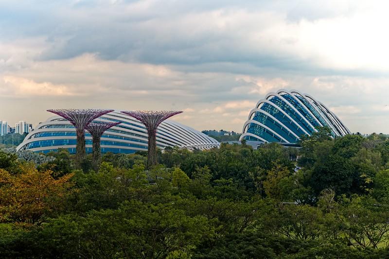 Singapore_034_20190405-172312 copy