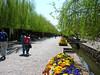 China - Lijiang Street Scene 3