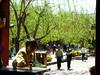 China - Lijiang Street Scene 1